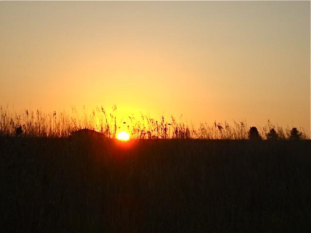 red sunrise by caussa-via