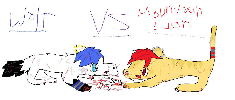 WOLF VS MOUNTIN...