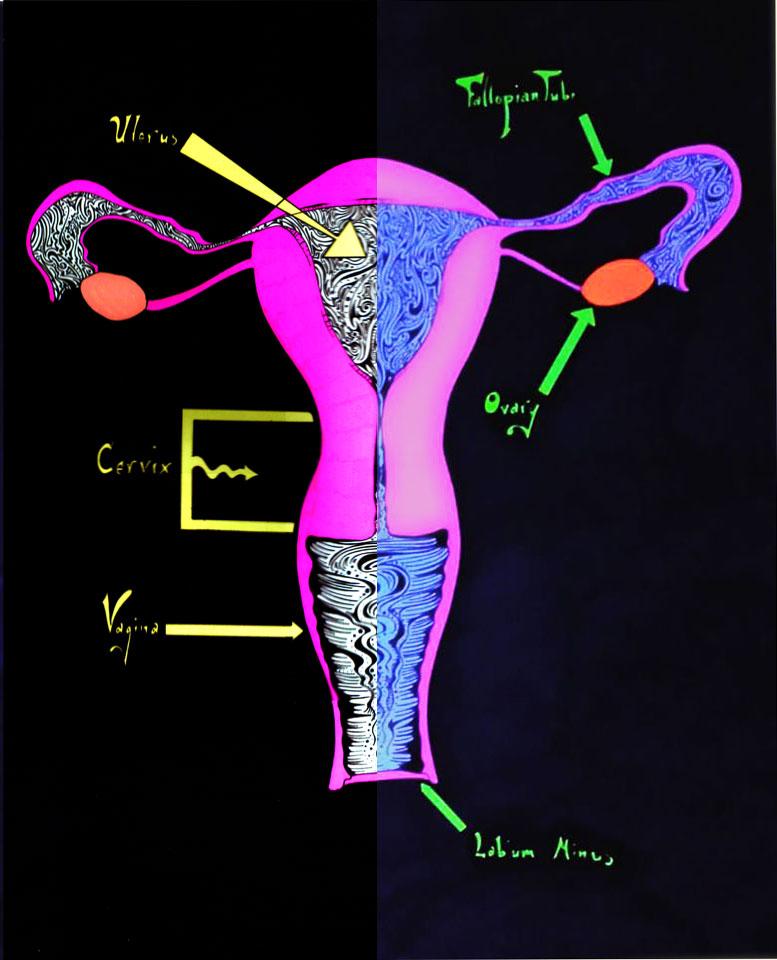 UV Reactive Uterus Diagram by KFutterwacken