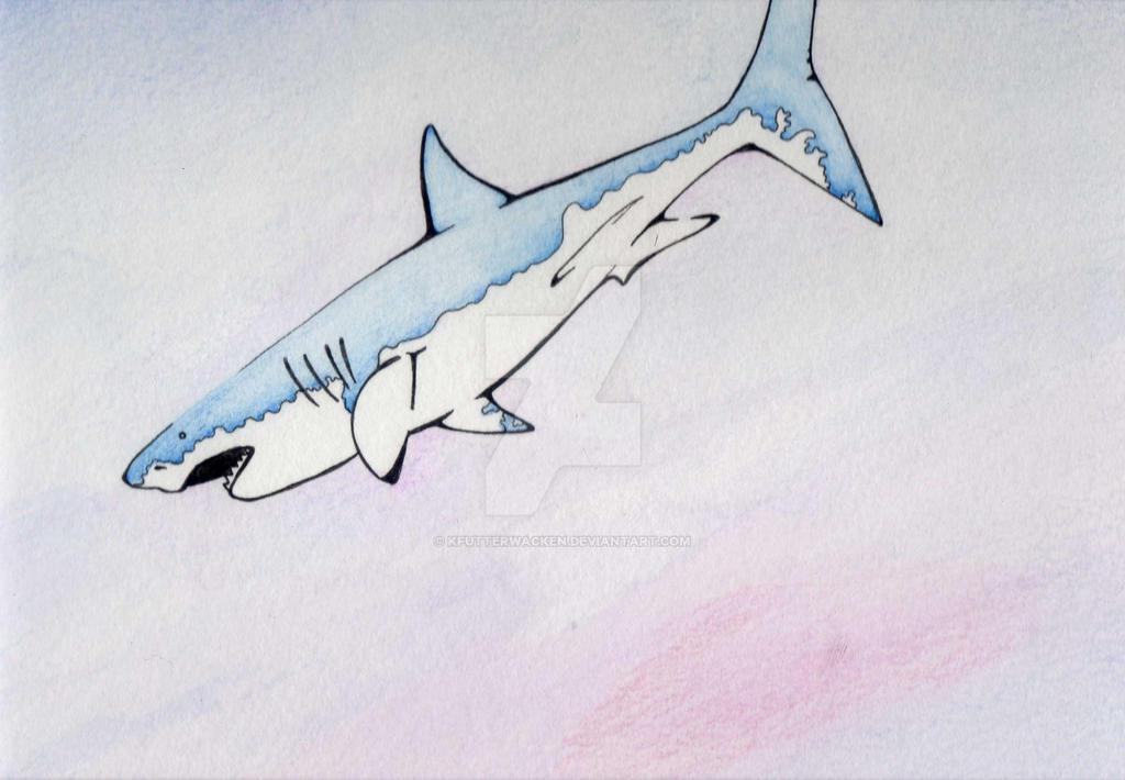Shark by KFutterwacken