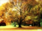 Autumn Updated