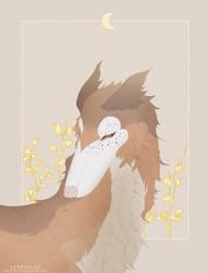 Gift \\ White gold by muryoko