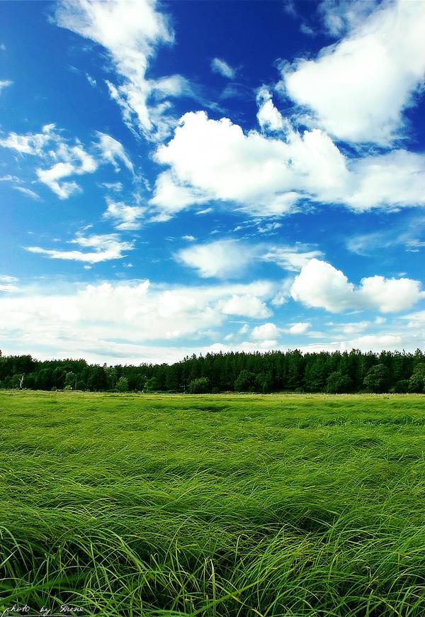 Summer mood 36_366 by eugene-dune