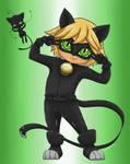 Cat Noir Chibi