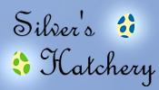 silver_s_hatchery__by_hopeadreki-dck37zg.png