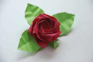 Origami Kawasaki Rose by lisadeng