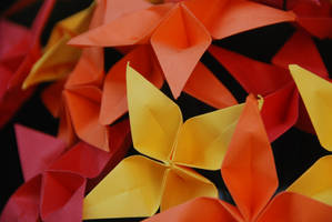 Origami Star Warm Autumn Bouquet by lisadeng