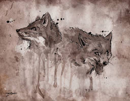 Foxed by LameReaper