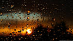 Drops of Sunset
