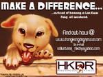 HKDR Flyer or Ad