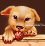 HKDR Flyer pup