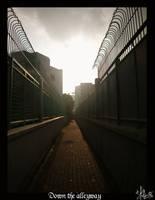 Down the Alleyway by Asenceana