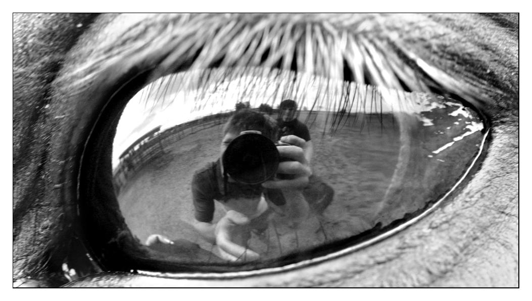 Self portrait by killersnowman