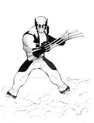 Wolverine.pin-up