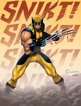 Wolverine 04 Color.
