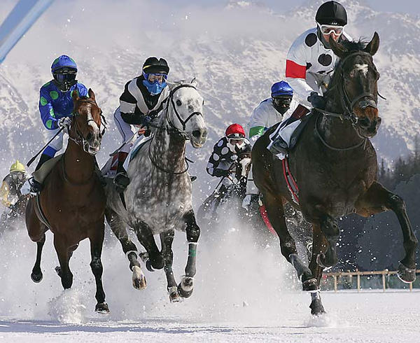 Horse Race in snow by TheGrimReaper22