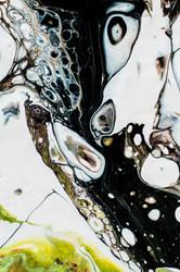 schwarz und weiss im fluss by eluela