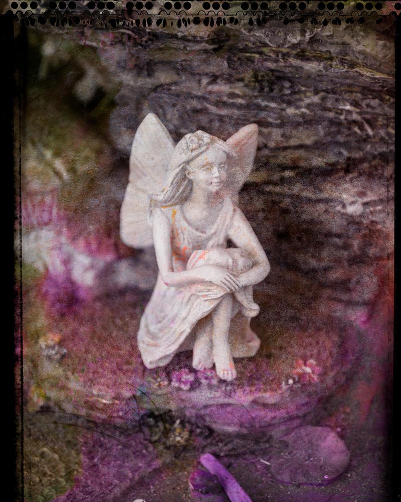 Fairy Dreamer by ZandyPop
