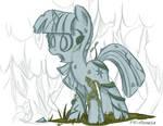 Pony standing still. Very still.