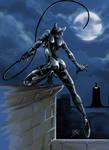 Catwoman vs Batman