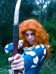 No Where to run - Merida - Brave by Distorted-Echo