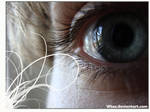 Eye-D '08