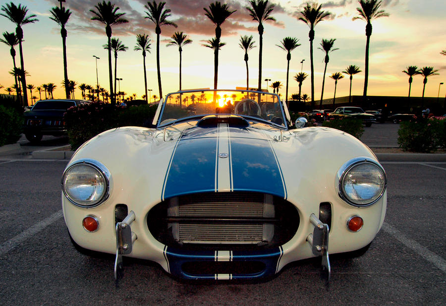Sunset Cobra by Swanee3