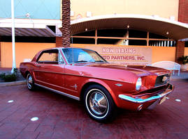 Plain Ol Mustang by Swanee3