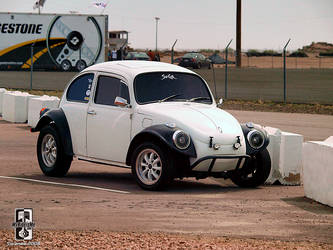 One Tuff Bug by Swanee3