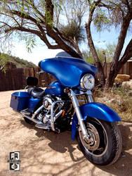 Blue Suede Harley