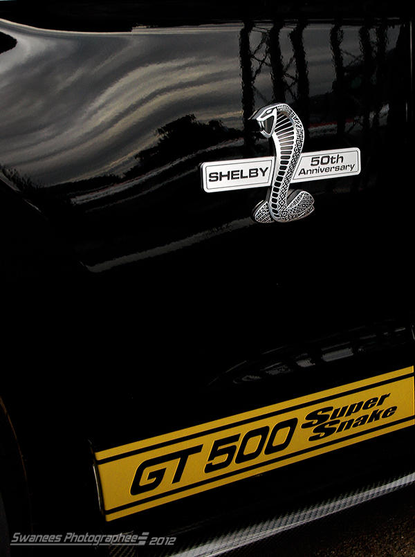 GT500 Super Snake Detail by Swanee3
