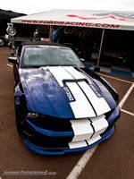 GT350 Blues by Swanee3