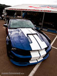 GT350 Blues