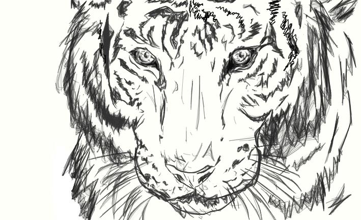 Line Drawing Tiger : Tiger line art by n njachick on deviantart