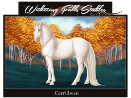 WF's Cerridwen | 20909 by WFS-EastDivision