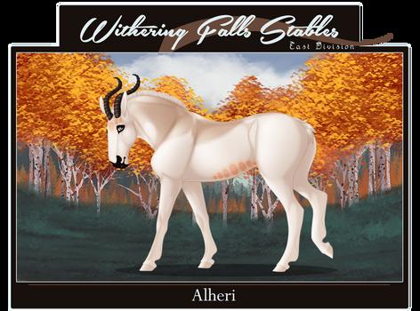 WF's Alheri | X3472