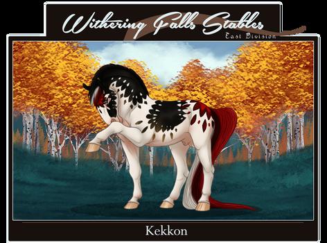 WF's Kekkon | 10451