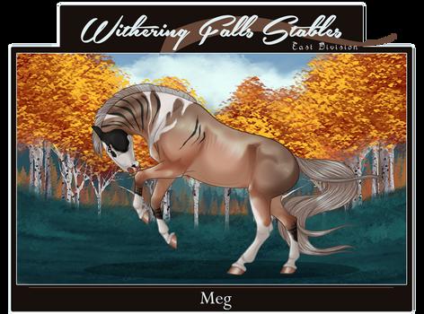 WF's MEG | 12040