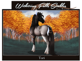 WF's Tori  | 10453