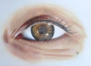 Eye and skin study