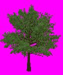 Pixelart 2d Tree III by sanntta82