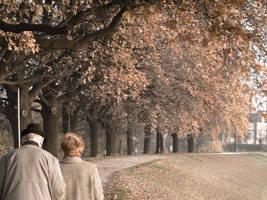 autumn by piorun