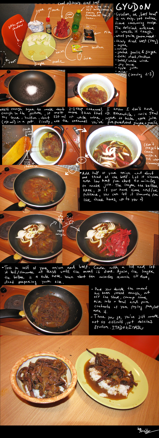 How to make gyudon by BrocX