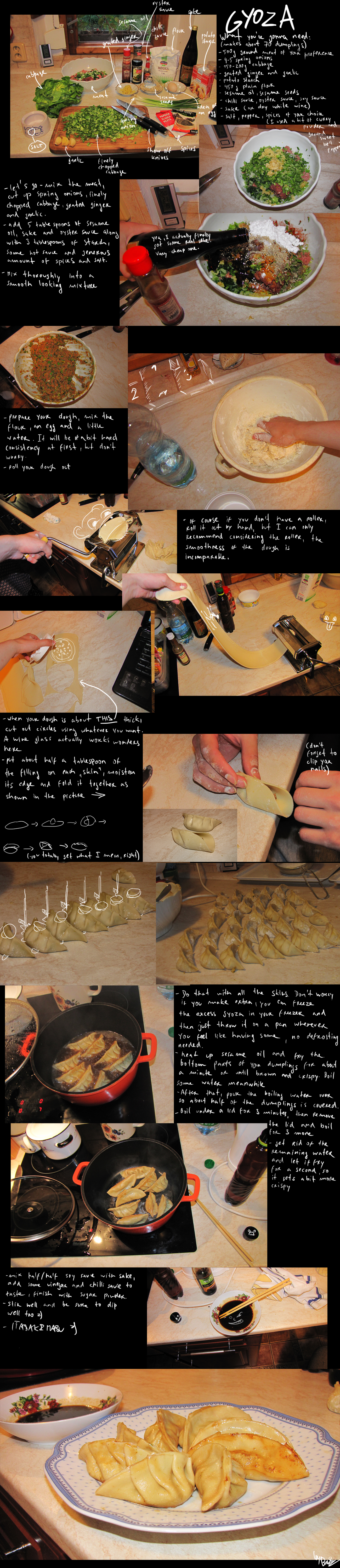 How to make gyoza by BrocX