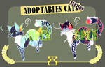 Adoptables Kittens [#11] | Auction | OPEN