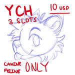 YCH 3 SLOTS [OPEN]
