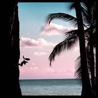 ocean avenue by ptitehooligan