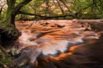 River Radiant