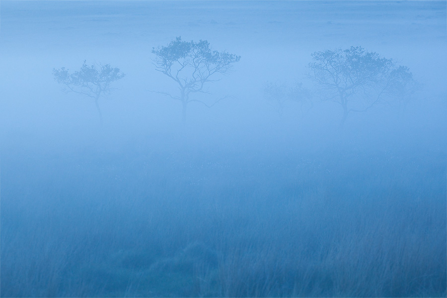 Dartmoor Blue by Alex37