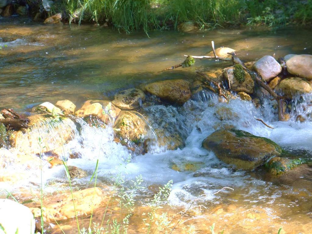River by XxSilverOwl13xX